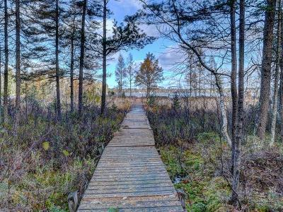Eagle River Residential Lots & Land For Sale: Near1594 Dollar Lake Rd E
