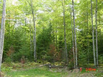 Lac Du Flambeau WI Residential Lots & Land For Sale: $23,000