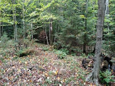Pickerel Residential Lots & Land For Sale: 9469 Woodhaven Rd