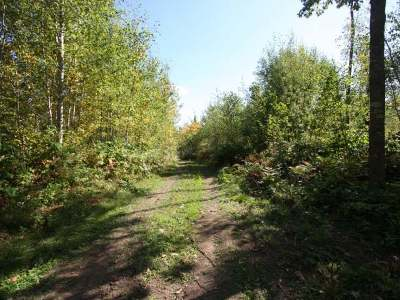 Rhinelander Residential Lots & Land For Sale: 40a Pergande Rd