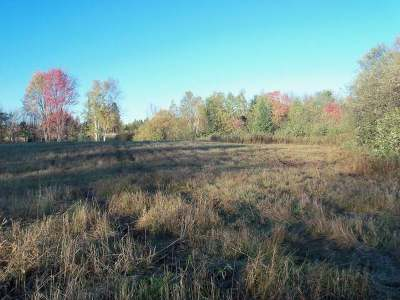 Residential Lots & Land Sold: On Squaw Creek Ave
