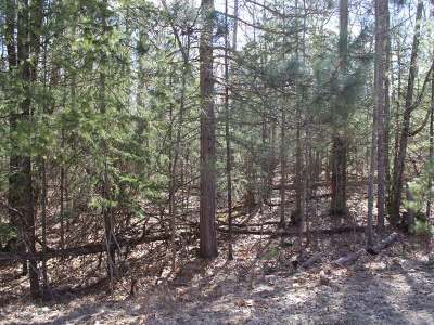 Eagle River Residential Lots & Land For Sale: On Meta Lake Rd