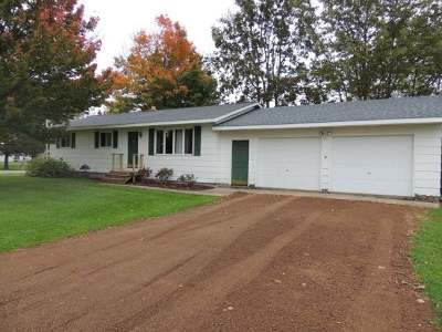 Antigo Single Family Home For Sale: 1133 Smith Ave