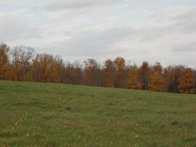 Park Falls Residential Lots & Land For Sale: On Lakeshore Dr
