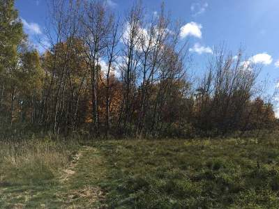 Rhinelander Residential Lots & Land For Sale: On Germond Rd