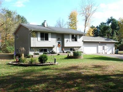 Merrill Single Family Home For Sale: W5254 Pa-Tray Ln