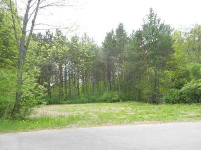 Three Lakes Residential Lots & Land For Sale: 1707 Huron St