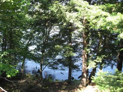 Residential Lots & Land For Sale: 19928 Thousand Island Lake Rd