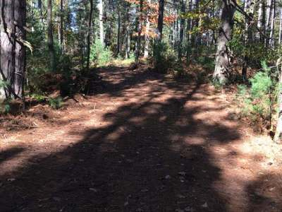 Rhinelander Residential Lots & Land For Sale: On Silver Lake Rd