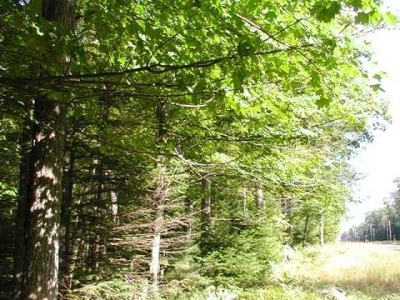 Residential Lots & Land For Sale: On Hwy 155 #Lot 4