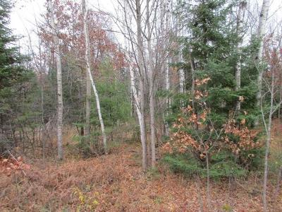 Rhinelander Residential Lots & Land For Sale: Near Cth W