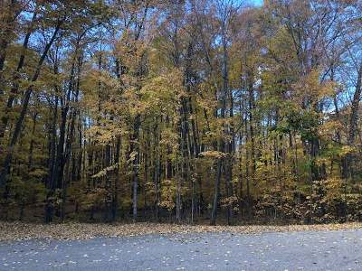 Rhinelander Residential Lots & Land For Sale: On Lakeview Cr