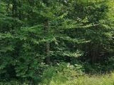 Oneida County, Lincoln County, Price County Residential Lots & Land For Sale: On Cth Y