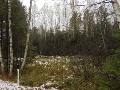 Three Lakes Residential Lots & Land For Sale: Lot #1 Military Rd #On