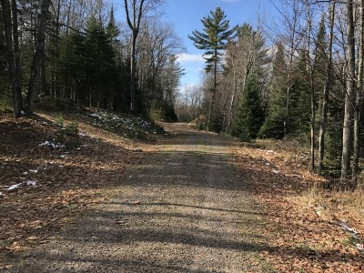 Sayner WI Residential Lots & Land For Sale: $17,900