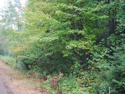Residential Lots & Land For Sale: Near Old 8 Rd #Lot 12