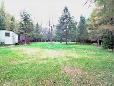 Single Family Home For Sale: 79508 Sinkhole Rd