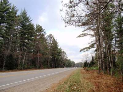 Eagle River Residential Lots & Land For Sale: Lot #5 Hwy 45