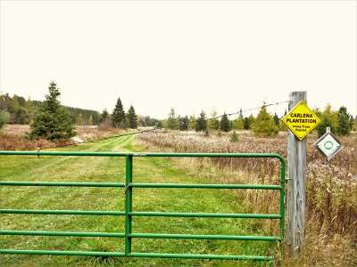 Residential Lots & Land For Sale: 79508 Sinkhole Rd #40 ac
