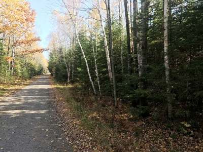 Rhinelander Residential Lots & Land For Sale: On Candy Ln #Lot 12