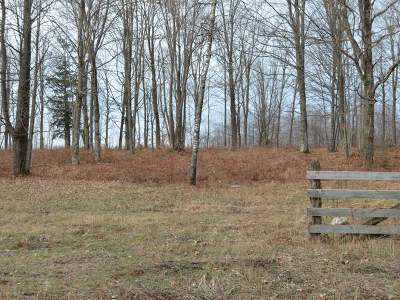 Residential Lots & Land For Sale: On Strong Rd #Lot 4