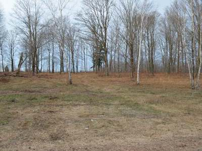Residential Lots & Land For Sale: On Strong Rd #Lot 5