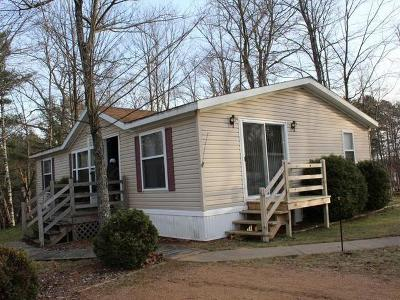 Eagle River WI Single Family Home For Sale: $39,900