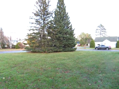 Residential Lots & Land For Sale: 906 Keenan St S