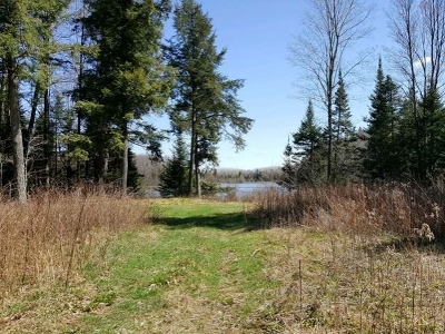 Residential Lots & Land For Sale: 862 Revolver Lake Rd
