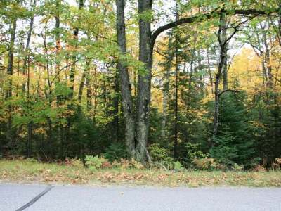 Vilas County Residential Lots & Land For Sale: On Monheim Rd