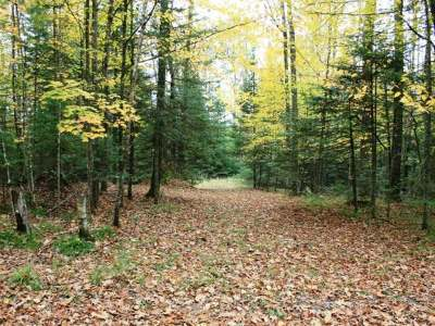 Vilas County Residential Lots & Land For Sale: On Starwood Dr