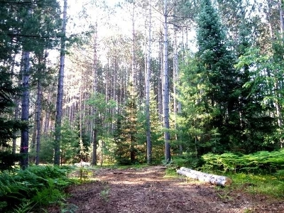 Minocqua WI Residential Lots & Land For Sale: $33,900