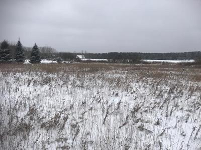 Merrill Residential Lots & Land For Sale: On Countryside Cr