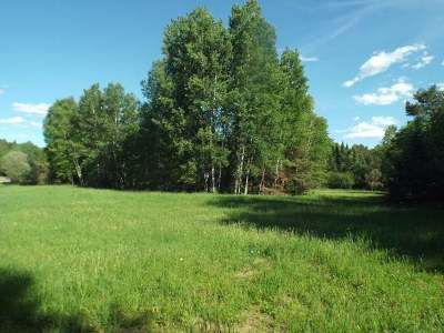 Residential Lots & Land For Sale: 3.4 Acre Spafford Rd