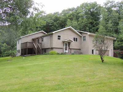 Antigo Single Family Home For Sale: N6529 Birchwood Ln