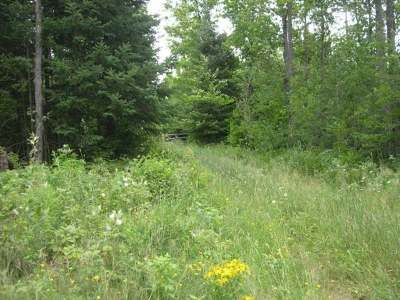 Residential Lots & Land For Sale: On Runny Waters Rd #Lot 9