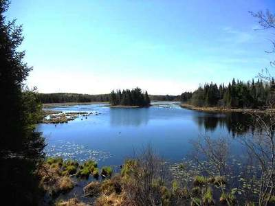 Minocqua WI Residential Lots & Land For Sale: $225,000