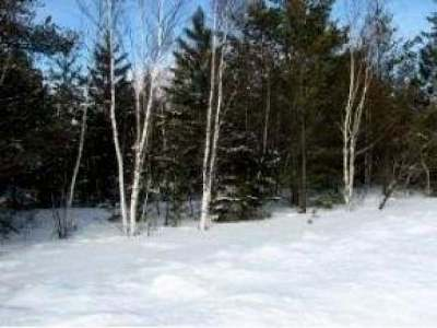 Eagle River Residential Lots & Land For Sale: 631 Dyer Farm Rd