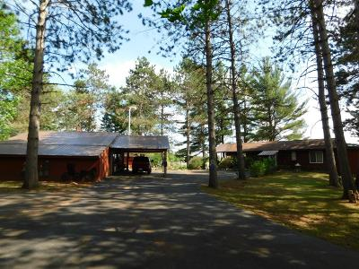 Lincoln County, Price County, Oneida County, Vilas County Single Family Home For Sale: 1815 Bay Mill Rd