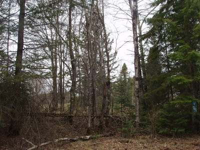 Glidden Residential Lots & Land For Sale: On Wisconsin St