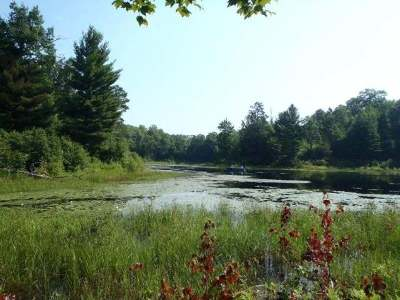Lac Du Flambeau WI Residential Lots & Land For Sale: $119,000