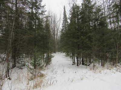 Gleason Residential Lots & Land For Sale: 10 Acres Vascheau Rd
