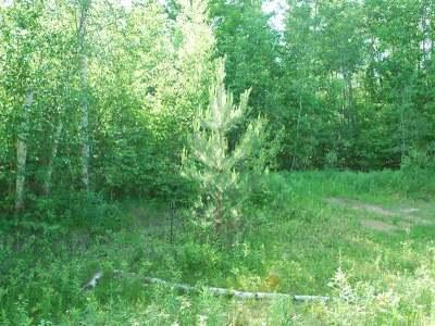 Crandon Residential Lots & Land For Sale: On Glacier Ridge Rd #Lot #16