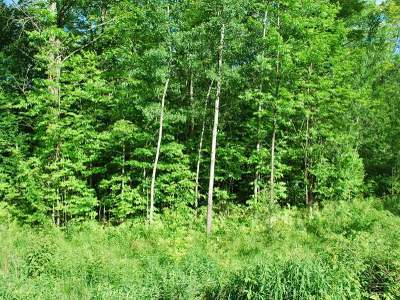 Crandon Residential Lots & Land For Sale: On Glacier Ridge Rd #Lot #18