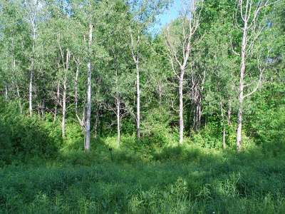 Crandon Residential Lots & Land For Sale: On Glacier Ridge Rd #Lot #21