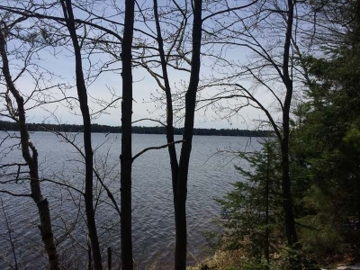 Newbold WI Residential Lots & Land For Sale: $179,000