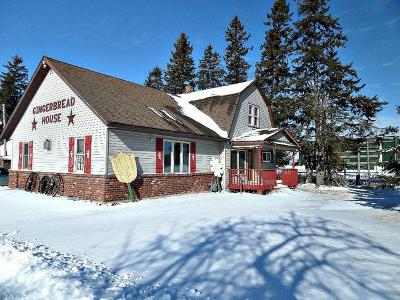 Antigo Single Family Home For Sale: N4704 Hwy 45