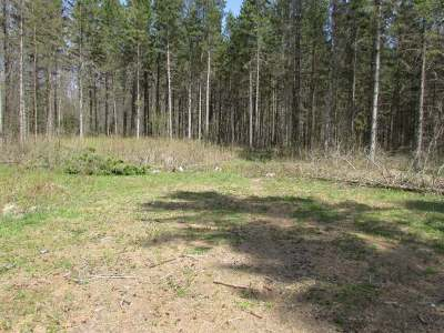 Bryant Residential Lots & Land Active O/C: On Polar Rd