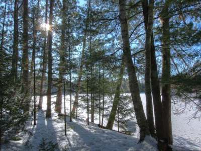 Eagle River Residential Lots & Land For Sale: Near1319 Watersmeet Lake Rd