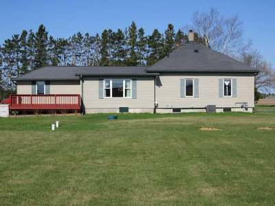 Antigo Single Family Home For Sale: W9385 Forrest Rd